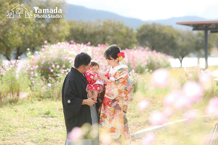 長野県コスモス結婚写真