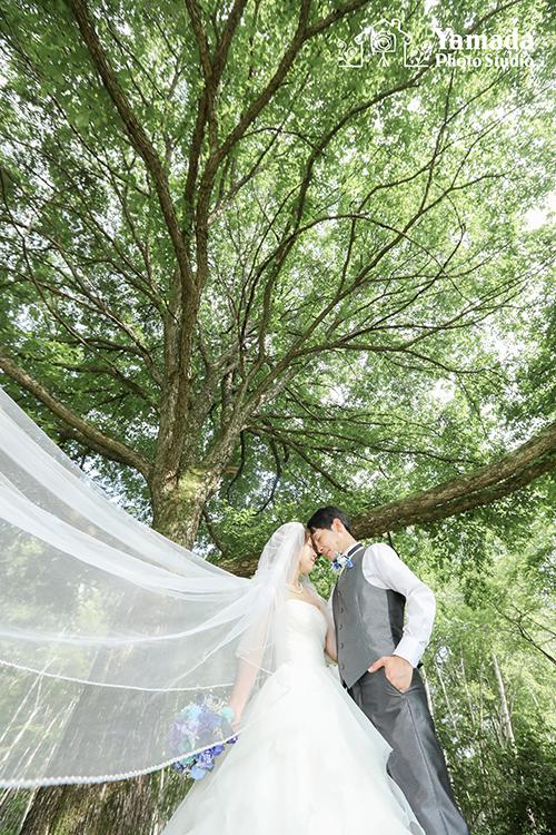 信州結婚写真山