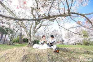 松本桜前撮り